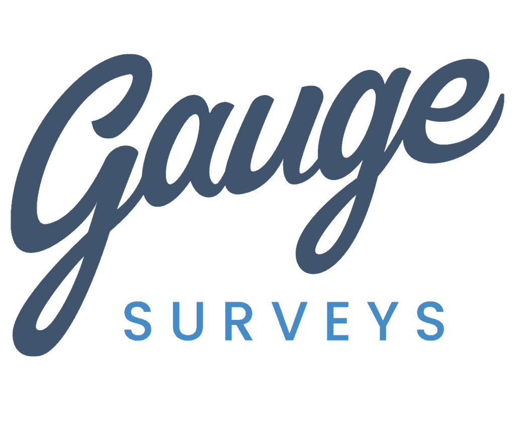 Gauge Surveys
